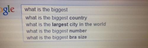 google-whatisthebiggest